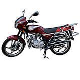 Мотоцикл VENTUS VS150-5 150 см3, фото 3