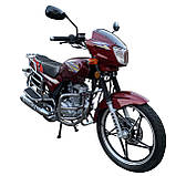 Мотоцикл VENTUS VS150-5 150 см3, фото 2