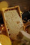 Подарунковий набір меду, фото 7