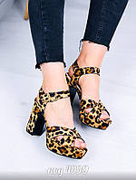 Леопардовые босоножки  37 размер, фото 1