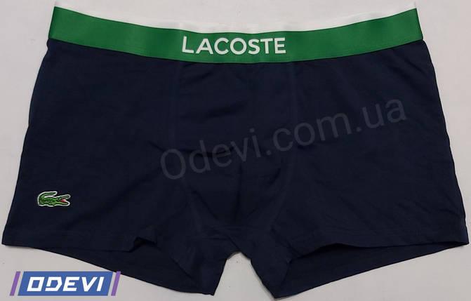 Мужские трусы Lacoste копия хлопок темно-синие, фото 2