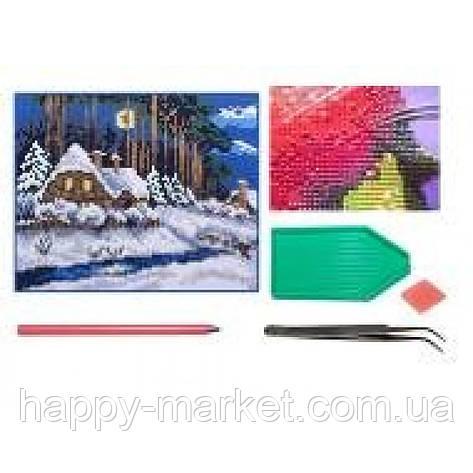 Мозаїка алмазна 5D № F1602 Зимний пейзаж 25 * 29см, фото 2