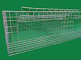 Клітка для утримання бройлерів двоповерхова. ВІДЕО, фото 4