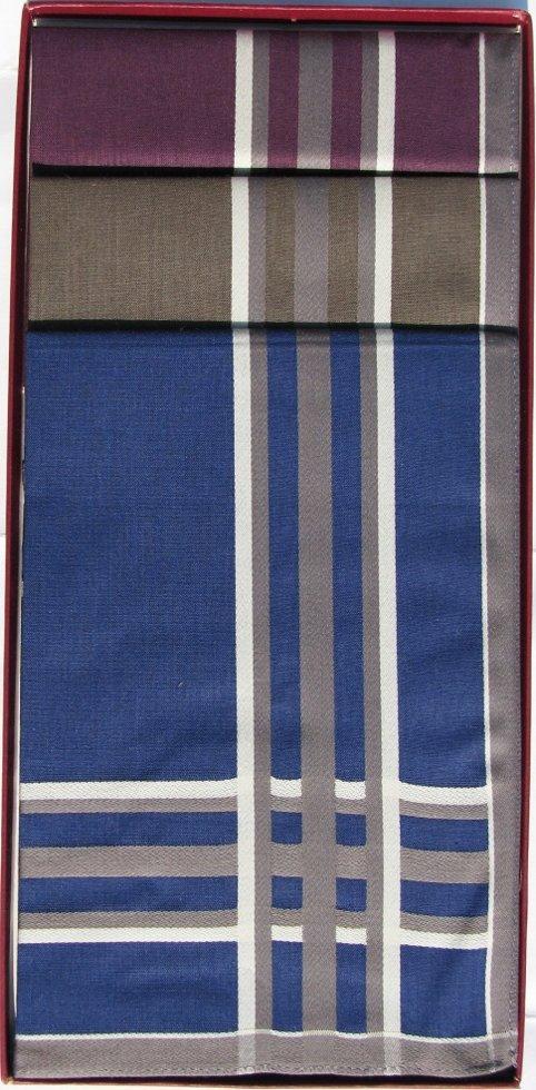 Комплект чоловічих носових хусток Guasch 104.96 D. 18 (991)