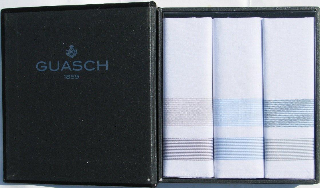 Комплект чоловічих носових хусток Guasch Folk 92-08 (242)