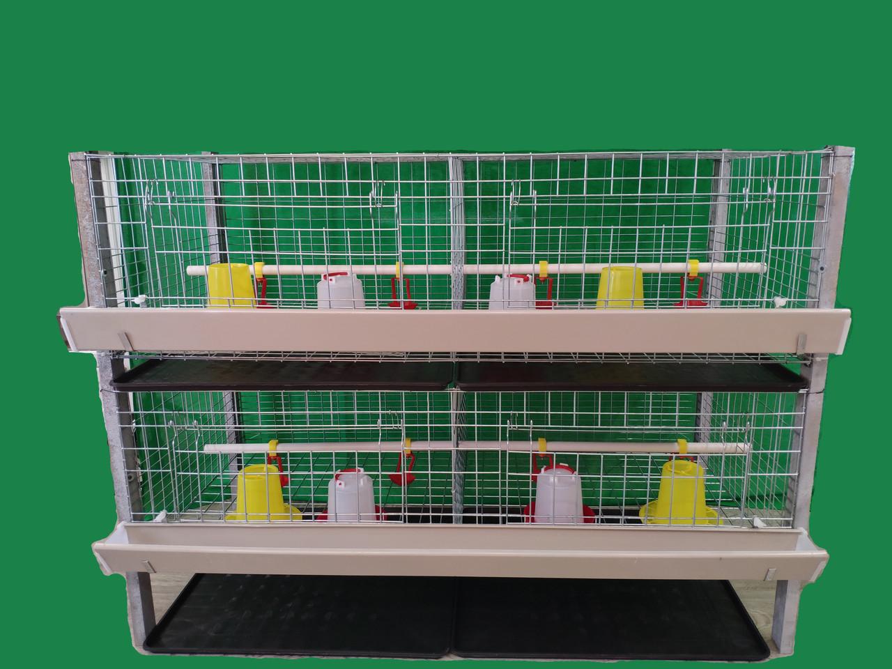 Клітка для утримання бройлерів двоповерхова. ВІДЕО