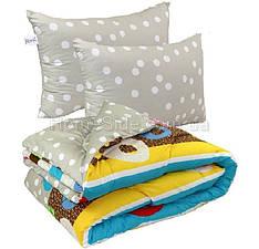 Одеяло евро 200x220 с подушками 50х70 двусторонний принт 200 г/м2 Барви Остра