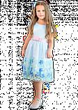 Нарядное голубое платье  для девочек, фото 3