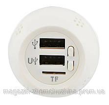 Ароматизатор 3 в 1 (с встроенным FM трансмиттером и 2 USB) 12 V 899, фото 2