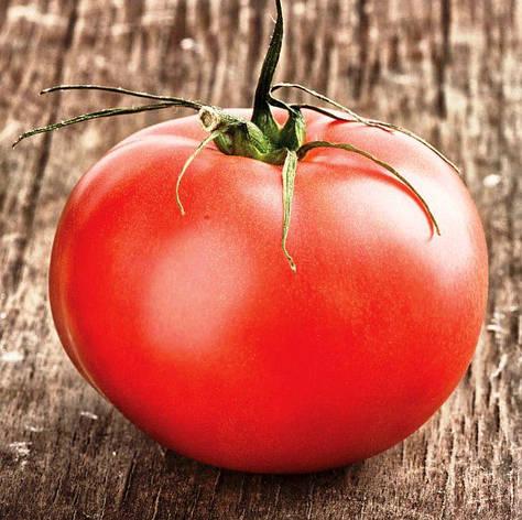 Семена томатов Соловей разбойник, фото 2