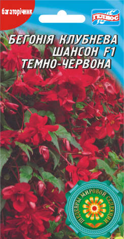 Бегония Шансон темно-красная F1 10 драже, фото 2