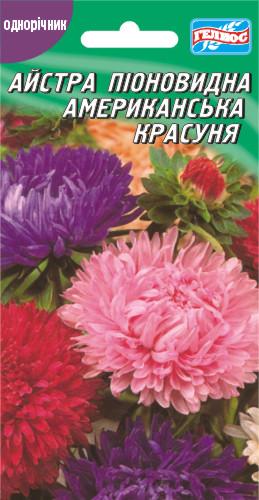 Астра Американская красавица 100 шт.
