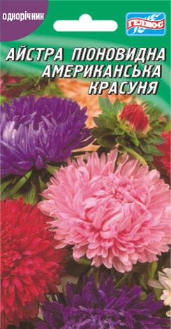 Астра Американская красавица 100 шт., фото 2