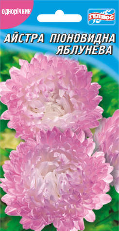 Астра Яблунева розово-белая 100 шт., фото 2