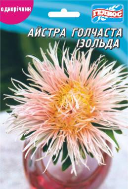 Астра Изольда 100 шт., фото 2