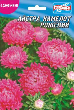 Астра Камелот розовый 100 шт.
