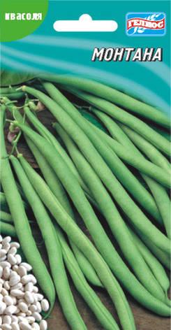 Семена фасоли кустовая спаржевая Монтана 10 шт., фото 2
