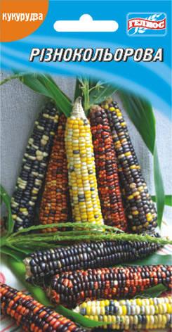 Семена кукурузы сахарной Разноцветная 20 шт., фото 2