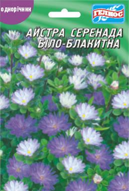 Астра Серенада бело-голубая 50 шт., фото 2