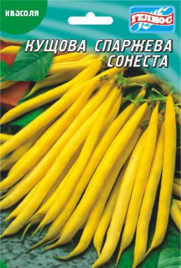 Семена фасоли кустовой спаржевой Сонеста 20 г, фото 2