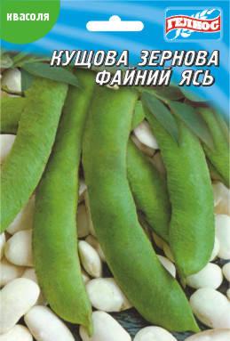 Семена фасоли кустовой зерновой Файный Ясь 20 г, фото 2