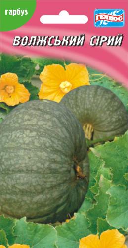 Семена тыквы Волжская серая 15 шт.