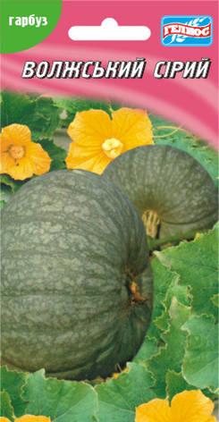 Семена тыквы Волжская серая 15 шт., фото 2