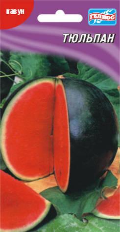 Семена арбуза Тюльпан 30 шт., фото 2