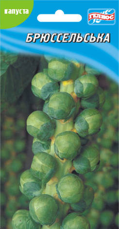 Семена капусты брюссельской 100 шт., фото 2