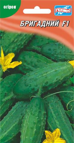 Семена огурцов пчелоопыляемых Бригадный F1 20 шт., фото 2