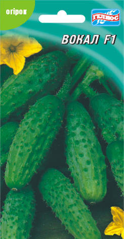Семена огурцов  партенокарпических Вокал F1 10 шт., фото 2