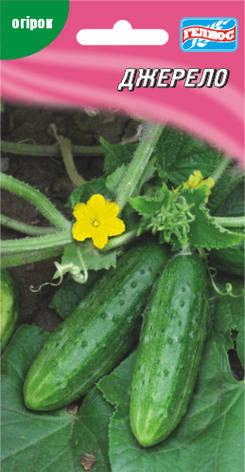 Семена огурцов пчелоопыляемых Джерело 40 шт., фото 2