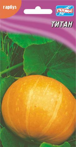 Семена тыквы Титан 5 шт., фото 2