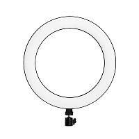Кольцевая светодиодная LED лампа (селфи-кольцо) YIFENG F-160A с держателем для смартфона