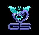GS Интернет-Магазин