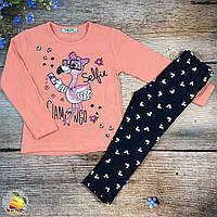 """Кофточка и лосины """"Фламинго"""" для девочки Размеры: 92,98,104,110 см (01137-1)"""