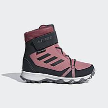 Ботинки TERREX Snow CF CP CW AC7965