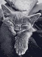 """Набір для розпису ArtCraft """"Котяча подяка"""" (11612АС)"""