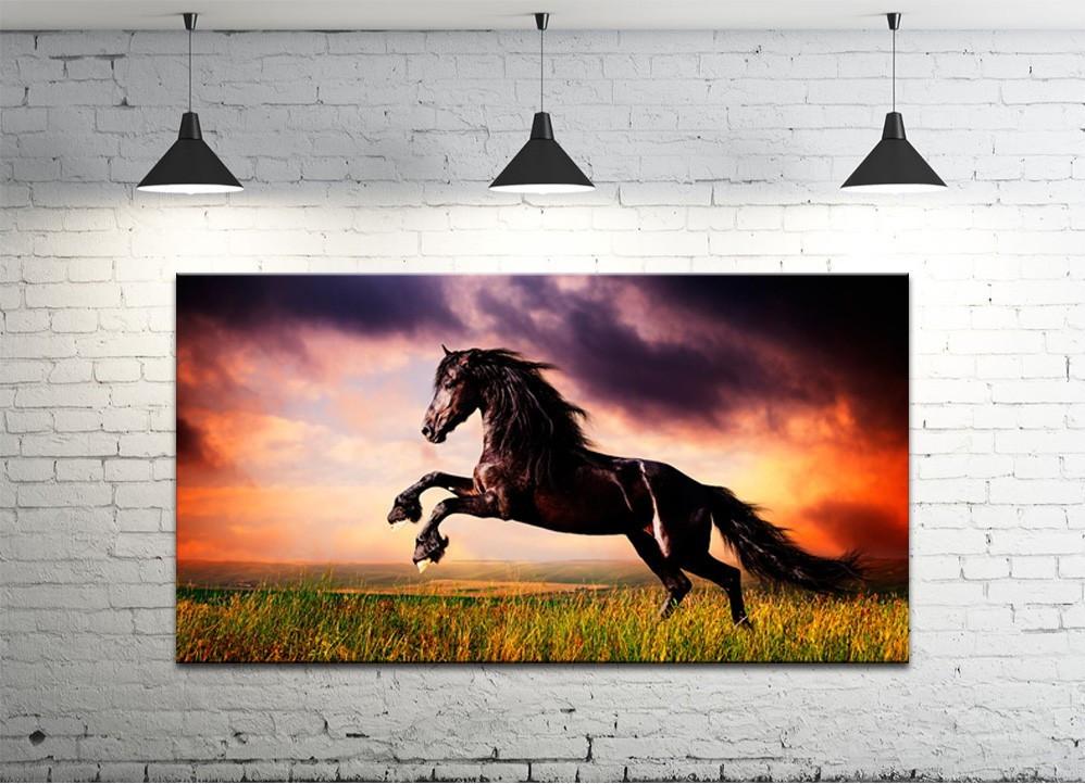 Картина на полотні DK Store (S50100-z439)