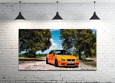 Картина на холсте DK Store (S50100-M806)