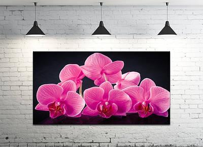 Картина на холсте DK Store (S50100-C1402)