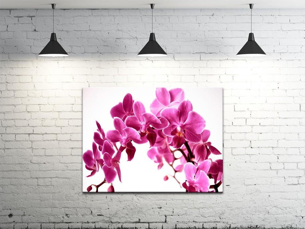 Картина на полотні DK Store (S4560-c1404)
