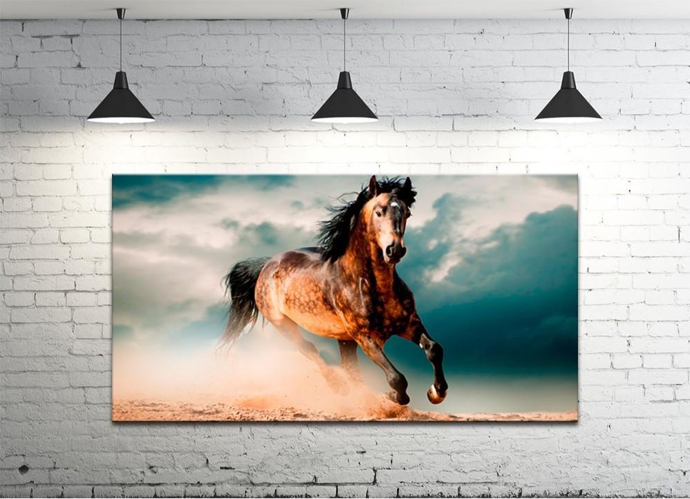 Картина на холсте DK Store (S50100-z447)