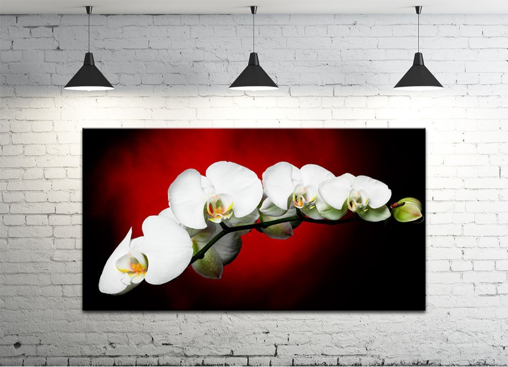 Картина на холсте DK Store (S50100-c22)