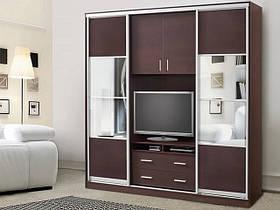 Шкафы-купе с ТВ нишей
