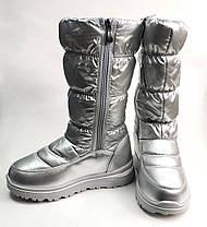 Детские дутики зимние теплые сапоги на зиму для девочки серебро Alaska 34р 21см, фото 3