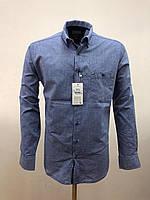 Сорочка чоловіча, прямого покрою, з довгим рукавом Birindelli IND-01-1650 100% бавовна L(Р)