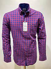 Сорочка чоловіча, прямого покрою, з довгим рукавом Birindelli IND-01-1690 100% бавовна XL(Р)