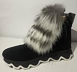 Ботинки женские зимние замшевые с натуральным мехом от производителя модель ЛУ433-4, фото 2