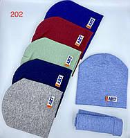 Комплект дитячий шапка+хомут на хлопчика р-ри 3-10 років (6кол)
